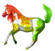 Paint horse ##STADE## - mantello 1000000138
