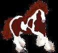 Paint horse ##STADE## - mantello 1000000163