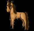 Cavallo di Przewalski ##STADE## - mantello 1000000168