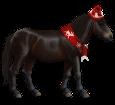 Pony del Bhutan ##STADE## - mantello 420